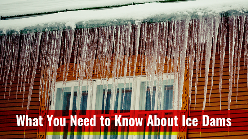 What You Need to Know About Ice Dams